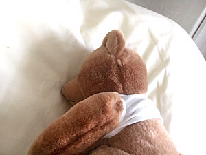 :Picture of teddy getting a great nights sleep after his massage.